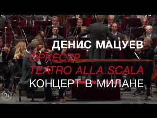 Оркестр играет в такт