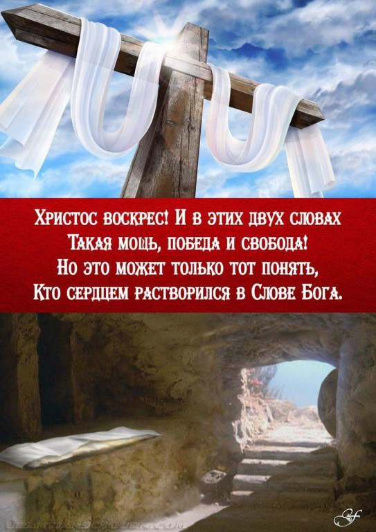 https://pp.userapi.com/c830401/v830401365/b6c03/XGNiM8Vq9Dk.jpg