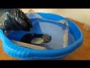 Проба аквапринта
