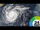 Число жертв урагана «Флоренс» в США возросло до 11 человек - МИР 24