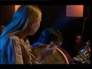 Brendan Power (Harmonica) - Jools Holland Show with Tim Edey Lucy Randall