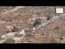 Израиль 28.08.2015. Наби Салех -Западный берег реки Иордан.Солдат Цахал vs мальчик