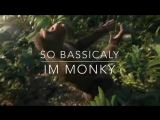 Ok So Basically Im Monky
