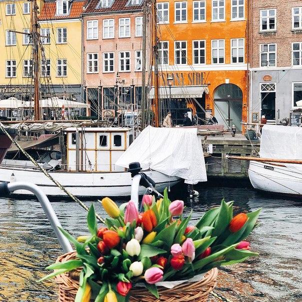 Петербург: прямые рейсы в Копенгаген всего за 4500 рублей туда-обратно из Хельсинки