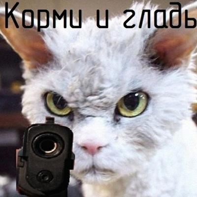 Дина Писаревская