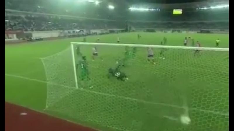 Фернандо Торрес забил гол сборной Нигерии