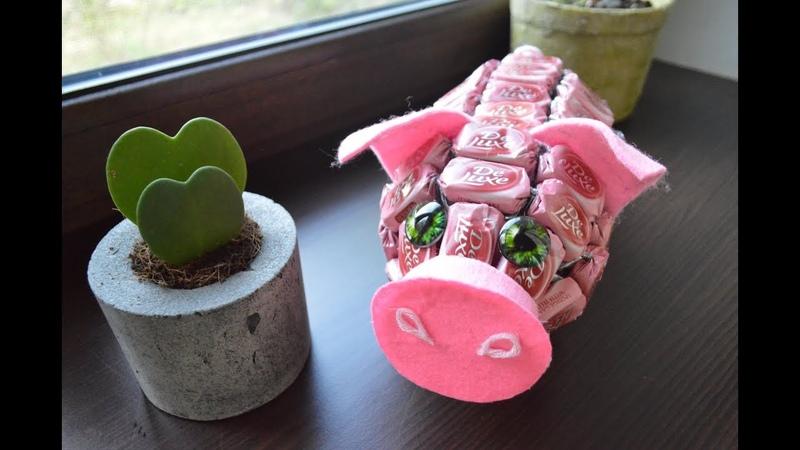 Свинка из конфет: сладкая композиция своими руками / Candy Pig DIY