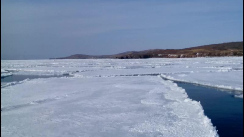 2 марта 2018 год ледовая обстановка в проливе Рейнеке