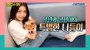 [셀럽스펫] 가수 유빈(Yubin)과 '숙녀견' 콩빈이의 특별한 나들이