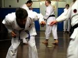 #10 Okinawan Karate Traditional Okinawan Goju-Ryu Karate trainingtechniques