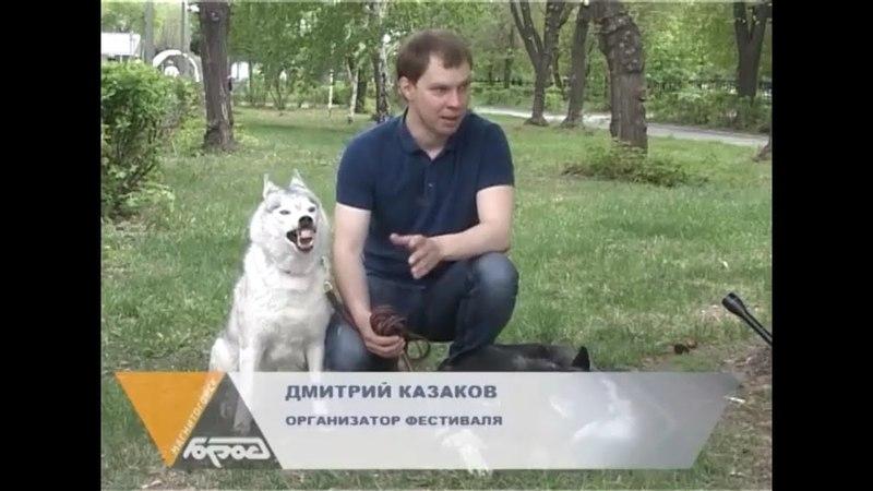 Стальной Рубеж Драйленд 2018 Анонс - Znak TV (от 24.05.2018)