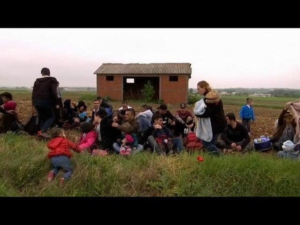 ЕС и миграция ситуация под контролем