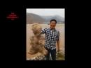 Шевелящийся человекообразный объект вымыло на берег в Китае
