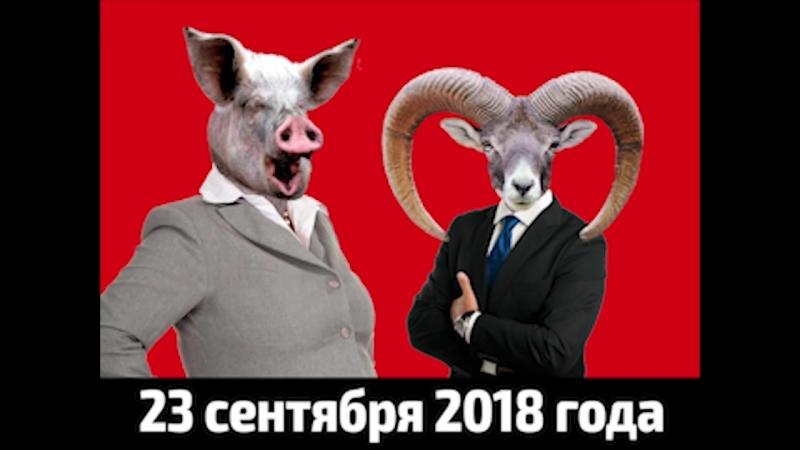 Долой выборы!