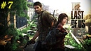 7 Параноик Билл – The Last of Us ♦ Одни из нас