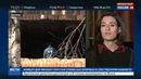 Новости на Россия 24 • Гиви взорвали в собственном кабинете. Первые кадры с места теракта