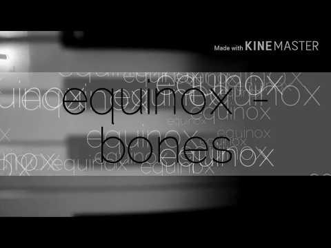 EQUINOX - BONES / COVER BY MIRA