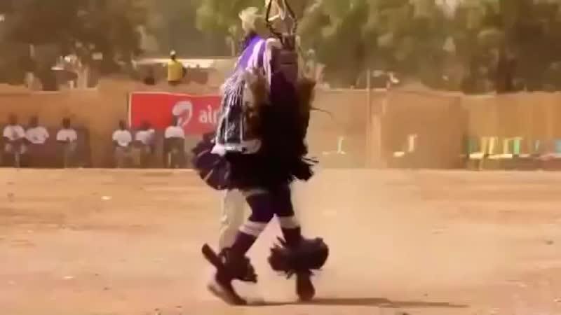 Тот самый зажигательный Шаман танцует под Ой, хто пье, тому наливайте
