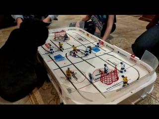 Кузя смотрит хоккейный матч.