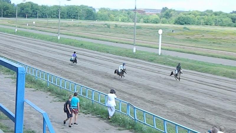 скачка на пони , Раменский ипподром 21.07.18г