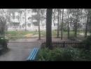 Перед дождём моют асфальт