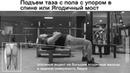 Упражнение Низ Ягодицы и задняя поверхность бедра Подъем таза с пола с упором в спине