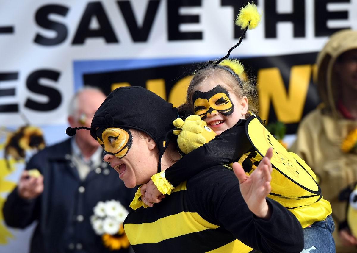 А мы жужжим, как пчелки: Уличные приколы брюссельских мамаш и их детишек