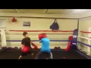 12 летние боксеры // ММА 95