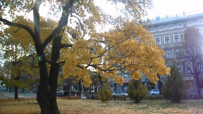 Алла Пугачёва−Осенние листья