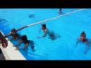 Геленджик август 2017 аквапарк золотая бухта