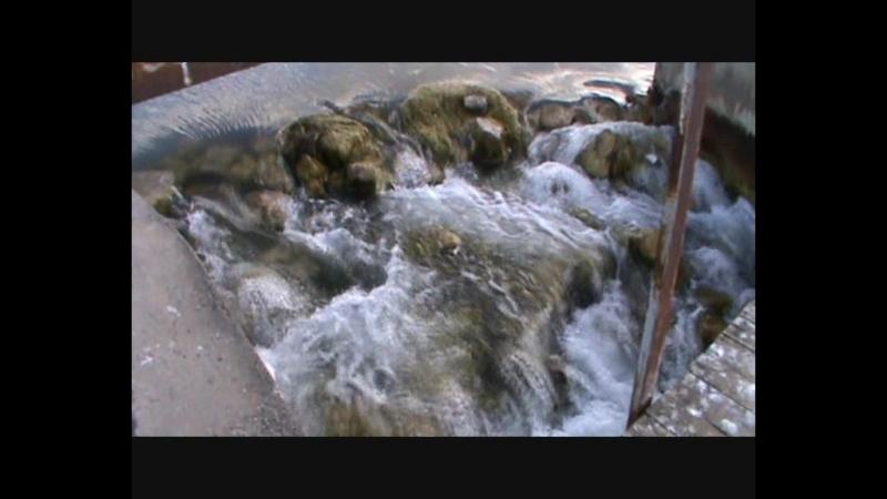 Тема Четверг и снег и жалко Адриашу из 6-ой части Улиной сюиты под Можайский водопад 25.07.18