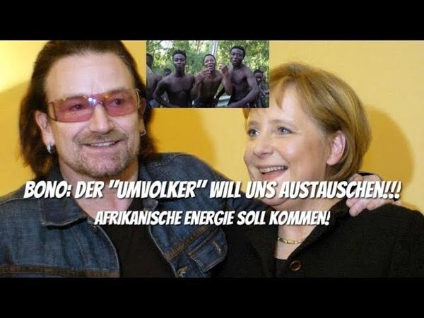 Bono: Der Umvolker will uns austauschen! Afrikanische Energie soll kommen!