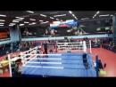 тайский бокс синий угол победа Аметхан Поллыев