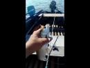 всем привет я снова на рыбалке 1 жерех