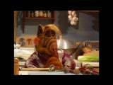 Alf Quote Season 2  Episode  19_Пальчик