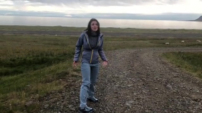 Подлые овцы 😂😂😂не даются без боя 😂😂😂😂 овцы исландия фотографироваться нехотят чтоделать ужас доброеутро кактотак