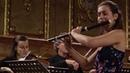 C P E Bach Flute Concerto in D Minor Wq 22 Un poco andante Anna Besson Kore Orchestra