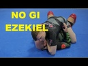 NO GI EZEKIEL as a MOTHER'S MILK Submission Follow Up