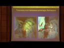 Использование катетера Хитмана и имплантируемых порт-систем в ветеринарии