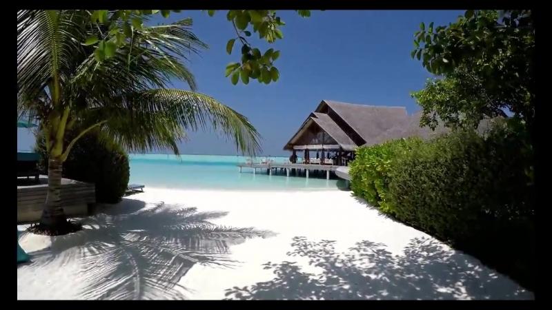 Chambre 13 - Tahiti Plage (sacd)