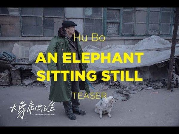 Competição Internacional 2018 | Teaser | An Elephant Sitting Still | Hu Bo