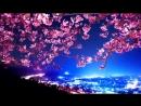 Классный японский саксофон. Блюз в красивых цветах парков мира