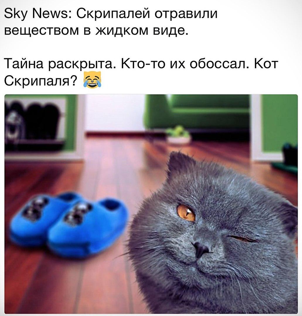 https://pp.userapi.com/c830401/v830401898/c0ef9/q3y_IOhcLFk.jpg