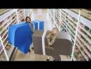Филипп Киркоров и Николай Басков - Извинение за Ibiza (Kanye West Lil Pump parody)