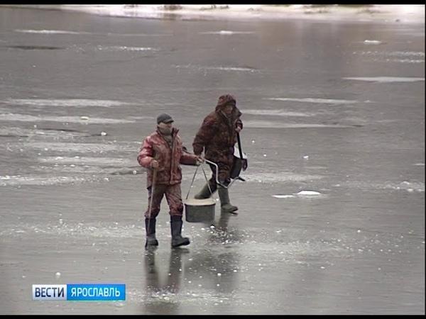 Первая трагедия на неокрепшем льду в Некрасовском районе погиб рыбак