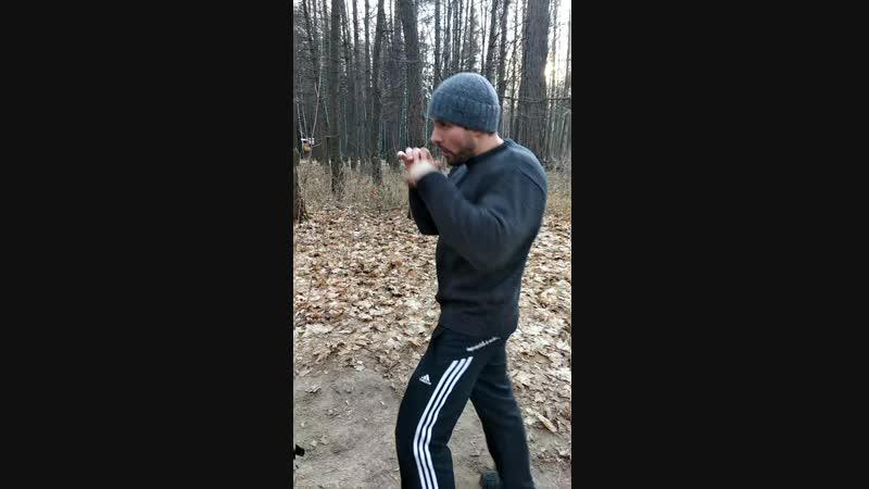 Кусочек моей forest workout CC warmups
