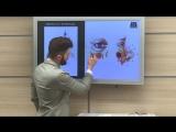 Анатомия лица Илья Шаров