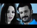 Zeynep Tarik || Я ради тебя был бы согласен на смерть!