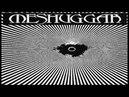 Meshuggah - The Debt of Nature