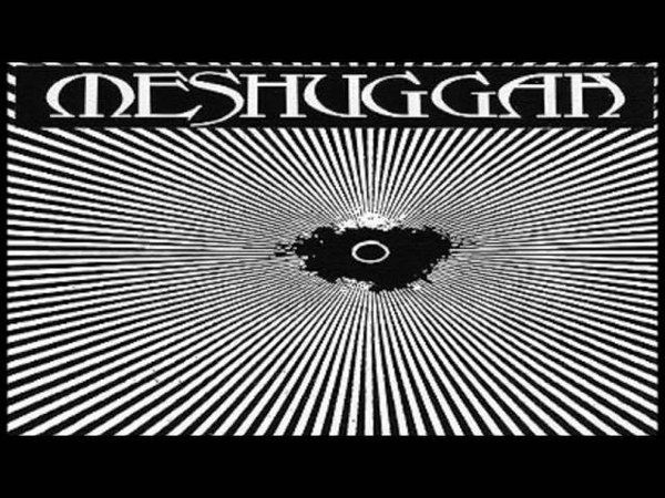 Meshuggah The Debt of Nature